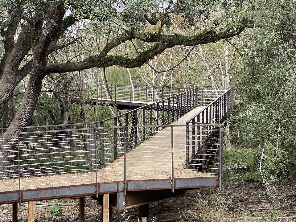 """Canopy Walkway Provides a """"Bird's Eye"""" Viewing Experience"""