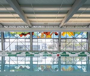 Pulp Studio Utilizes 1,000 sq. ft. of Laminated Glass  in Pool Mural