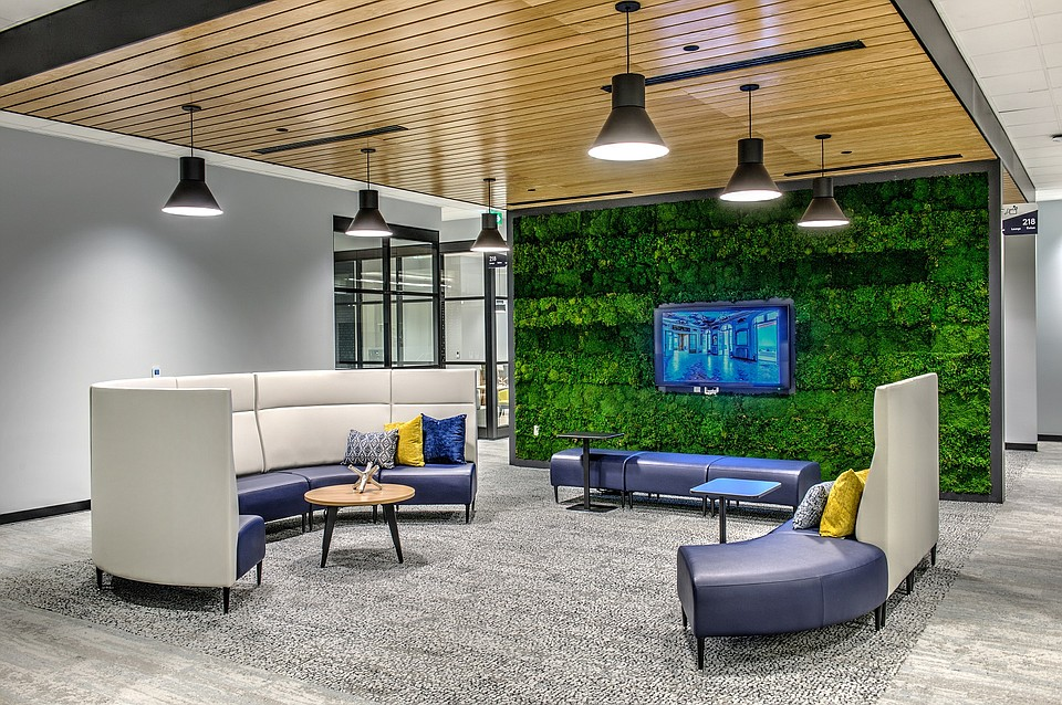 Lighting Sets the Mood for Nature-Inspired Government Co-Working Space